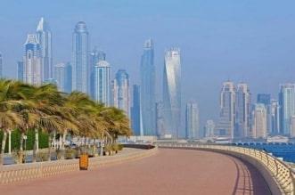 حيوان بري طليق في دبي والشرطة تحذر - المواطن