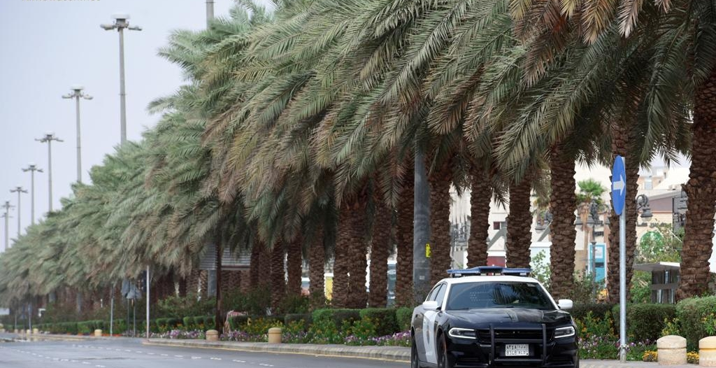 قصر الخروج من المنازل في الرياض والمدن الثمان على البالغين وفي الحالات الضرورية فقط