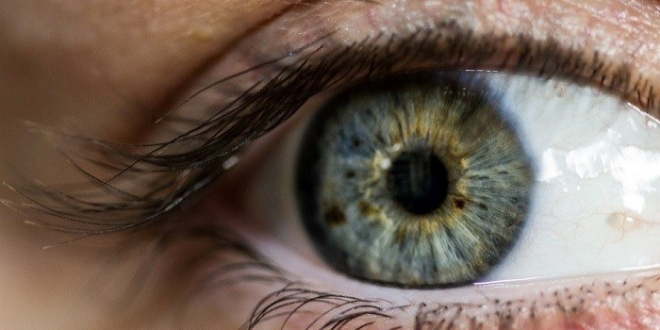 صورة الصحة: فحوصات العيون متوفرة مجانًا
