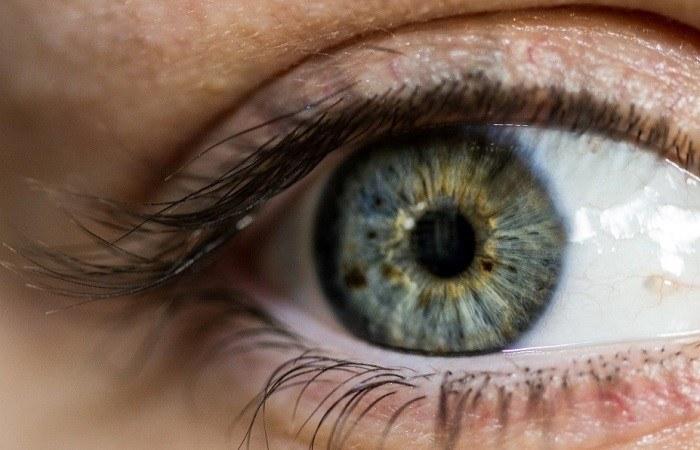 الصحة: فحوصات العيون متوفرة مجانًا