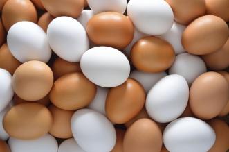 استيراد كميات إضافية من البيض خلال أيام - المواطن
