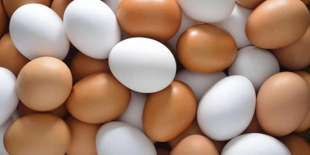 نصائح من الغذاء والدواء لضمان سلامة البيض والوقاية من الأمراض
