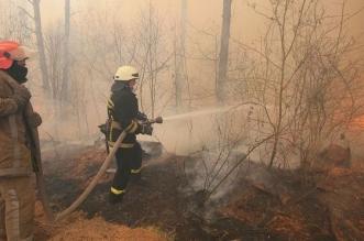 حريق الغابات يحاصر محطة شيرنوبل النووية - المواطن