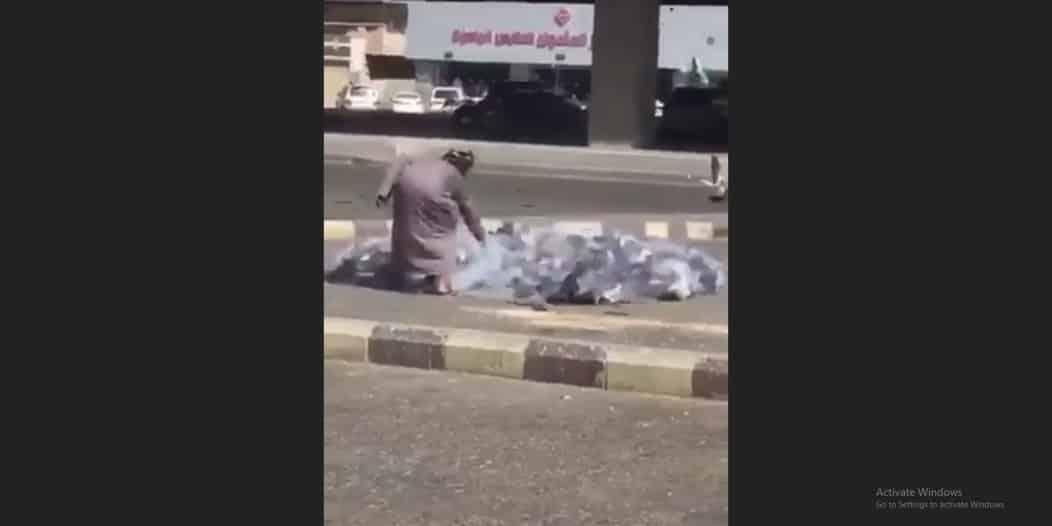 فيديو.. رجل يصطاد الحمام وغرامة 20 ألف ريال في انتظاره!