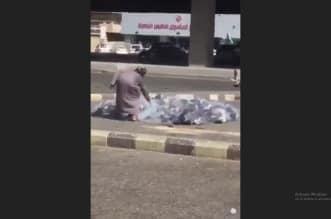 فيديو.. رجل يصطاد الحمام وغرامة 20 ألف ريال في انتظاره! - المواطن