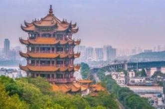 الصين تكشف نتائج التحقيق بمصدر فيروس كورونا - المواطن