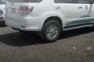 فيديو.. ضبط عمالة تعبئ أطنانًا من البصل بطرق بدائية في جدة - المواطن