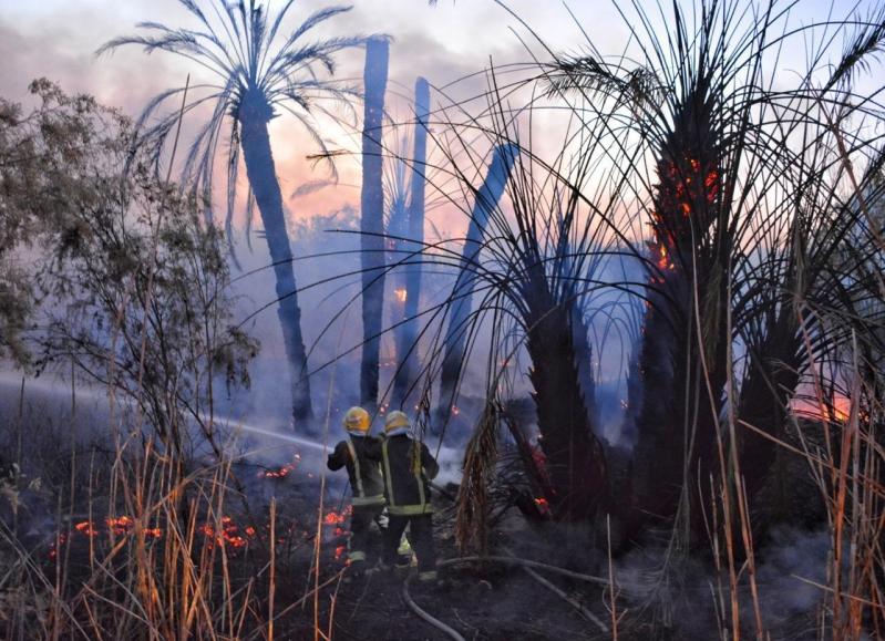 مدني حائل يخمد حريقًا في مزرعة بحي السويفلة
