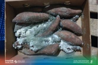ضبط مستودع يخزن فواكه وخضروات فاسدة وإتلاف 1100 كجم بالدمام - المواطن