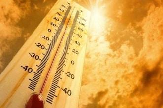 19 يومًا.. الفارق بين بدء الصيف أرصاديًا وفلكيًا في يونيو - المواطن