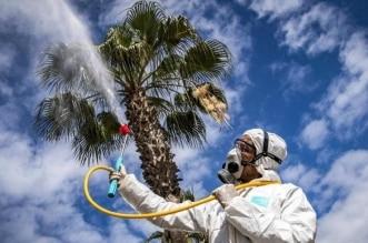 دراسة: حرارة الصيف لن توقف انتشار كورونا.. استشاري يعلّق - المواطن