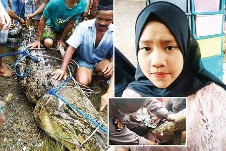 تمساح بلا أسنان يقتل شابة إندونيسية ويعجز عن أكلها