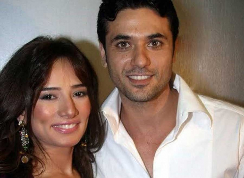 قرار قضائي في مشاجرة أحمد عز وشقيقة زينة