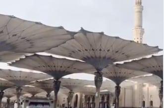 فيديو.. أمطار الخير والبركة تهطل على ساحات المسجد النبوي - المواطن