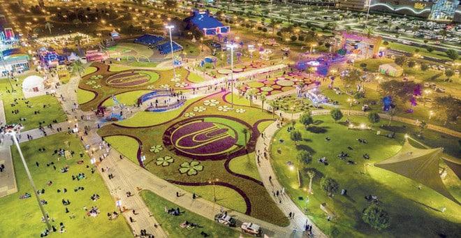 قصص تداعب الخيال في تبوك مدينة الـ 19 مليون زهرة
