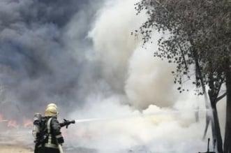 مدني بيشة يباشر حريقًا في مزارع نخيل بمركز ترج - المواطن