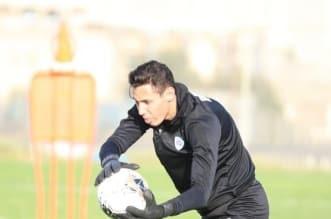 المغربي عبدالعالي المحمدي