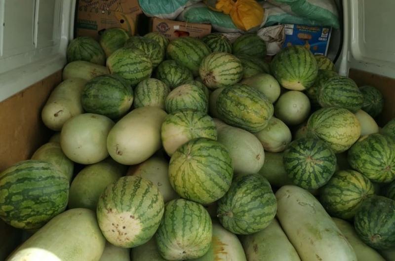 مصادرة 817 كجم من الخضروات والفواكه في المدينة المنورة