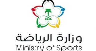 وزارة الرياضة تُعلن استحقاق 15 ناديًا من الدرجة الأولى لدعم الحوكمة