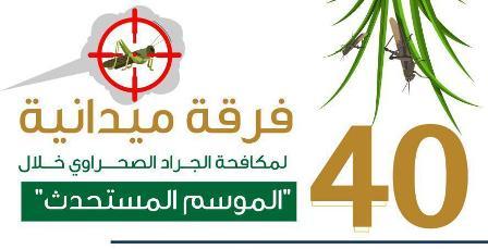 40 فرقة ميدانية لمكافحة الجراد الصحراوي في 4 مناطق