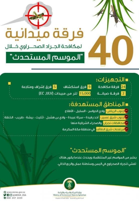 40 فرقة ميدانية لمكافحة الجراد الصحراوي في 4 مناطق - المواطن