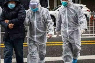 9 معلومات عن الوباء المحتمل لفيروس إنفلونزا الخنازير الجديد في الصين (2)