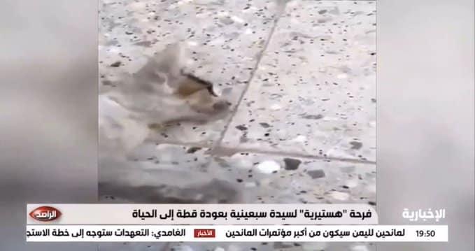 فيديو.. مواطنة تروي قصة إنقاذ قطة تعرضت للاختناق بالرياض