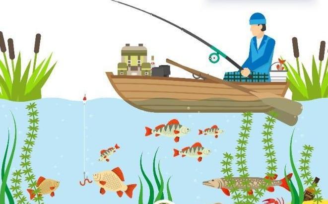 البيئة تصدر أول رخصة إلكترونية خاصة بقوارب الصيد