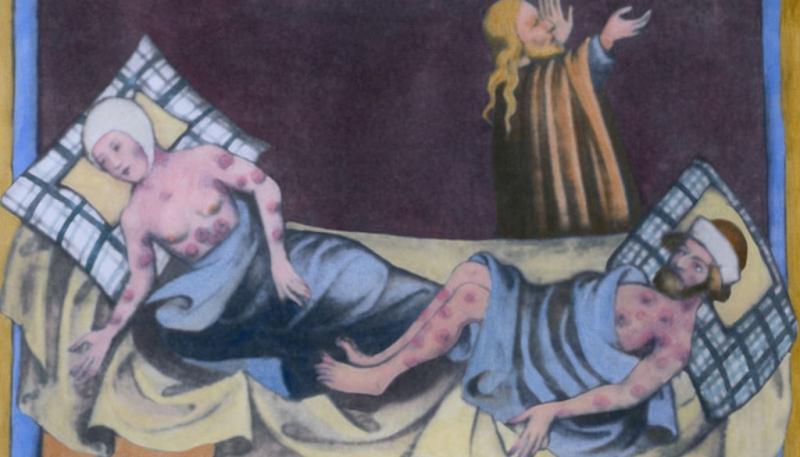 ما الفرق بين الطاعون الدبلي في الصين والأسود في القرون الوسطى؟ - المواطن