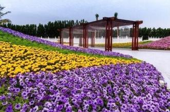 بحيرة المدينة الذكية في ينبع بيئة مثالية ومتنفس ووجهة سياحية - المواطن
