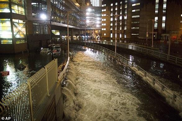 عاصفة استوائية بسرعة 50 ميلًا تضرب نيويورك اليوم - المواطن
