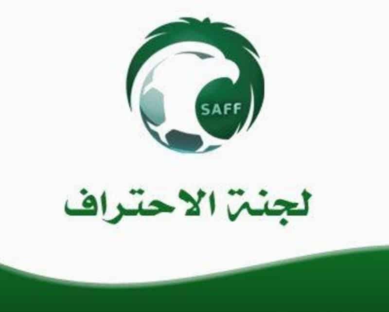 شعار لجنة الاحتراف
