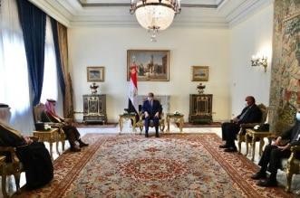السيسي يبحث مع وزير الخارجية العلاقات الثنائية ومستجدات الأحداث - المواطن