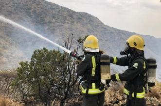 شاهد.. إخماد حريق في أشجار بمنطقة جبلية وعرة بقرية القفعة - المواطن