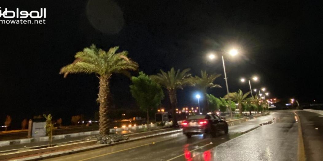 فيديو.. أمطار المساء بالبرك والغيوم تغلف السماء