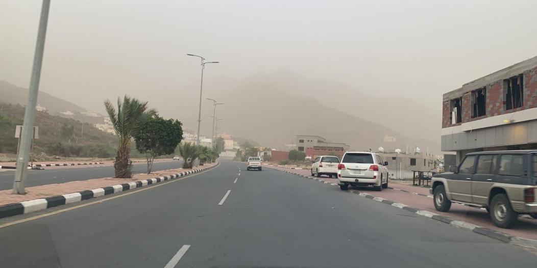 الأرصاد : غبار يحد الرؤية غدًا على 4 مناطق