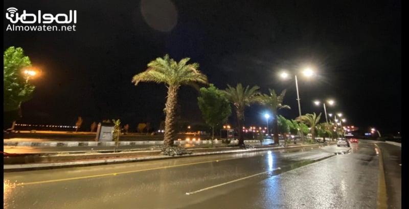 فيديو.. أمطار المساء بالبرك والغيوم تغلف السماء - المواطن