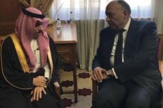 وزير الخارجية يصل القاهرة ويعقد جلسة مباحثات مع نظيره المصري - المواطن