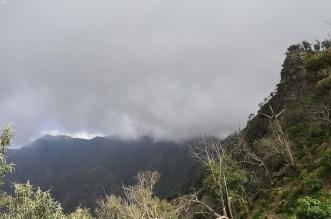 جازان الآن .. أمطار متفرقة ولوحة جمالية للطبيعة - المواطن