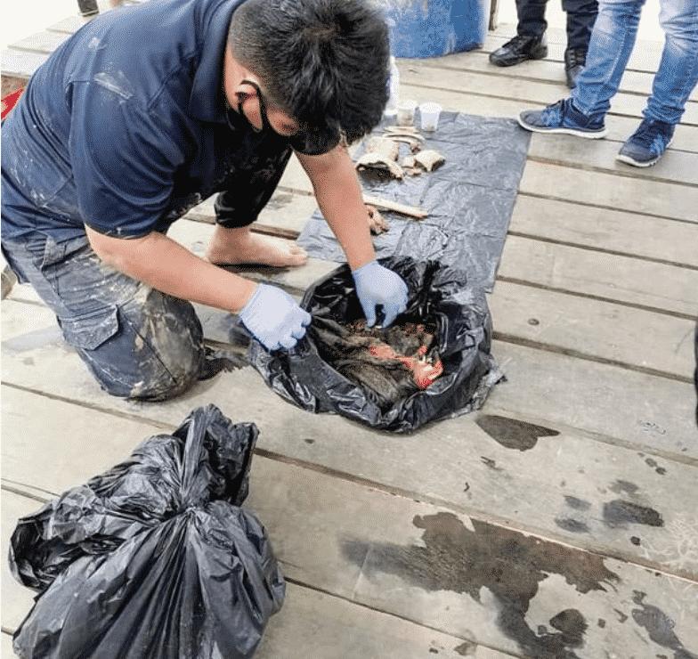 العثور على صبي مفقود داخل بطن تمساح (1)