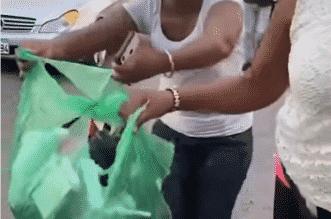 ألقت بخادمتها الكينية في الشارع وأغراضها بكيس قمامة! - المواطن