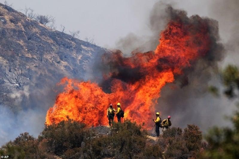 حرائق غابات كاليفورنيا الضخمة تقضي على 20 ألف فدان