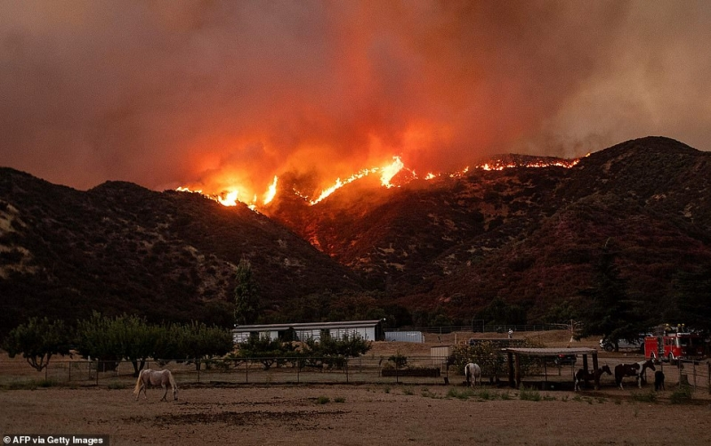 حرائق الغابات تتسبب في إخلاء مئات المنازل بكاليفورنيا