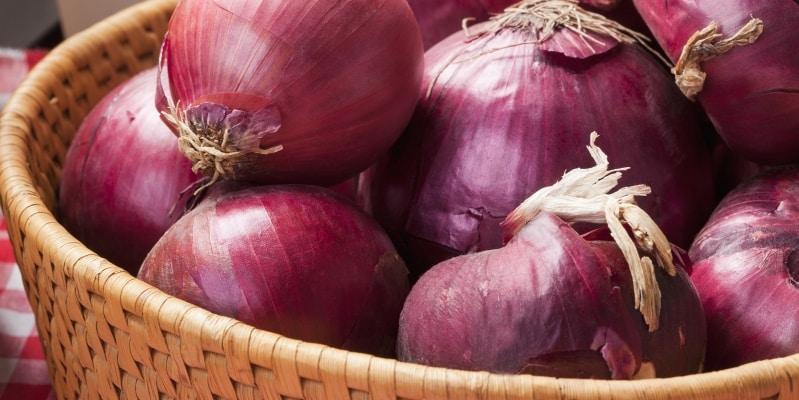 استشارية تغذية: لهذا السبب إعداد الطبيخ يعتمد على البصل والطماطم