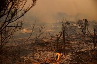 كاليفورنيا تحترق بـ11 ألف ضربة صاعقة خلال 72 ساعة - المواطن