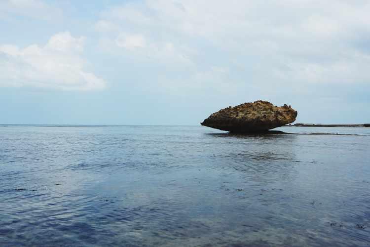 لماذا تستحق محمية جزر فرسان السعودية دخول اليونسكو ؟