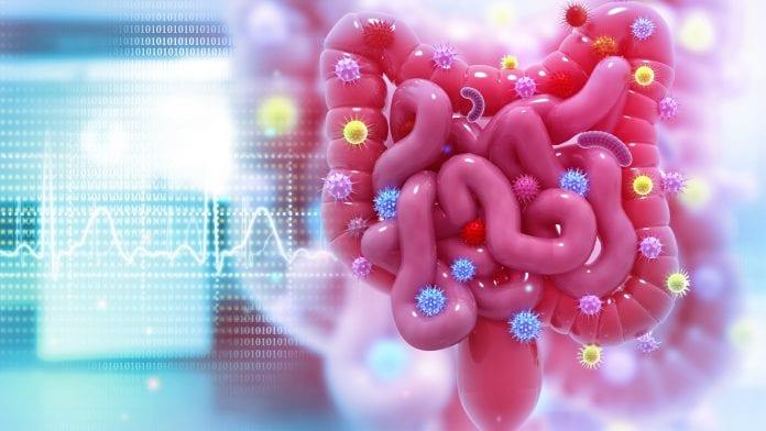 ما أسباب الإصابة بـ سرطان القولون وكيفية الوقاية منه؟