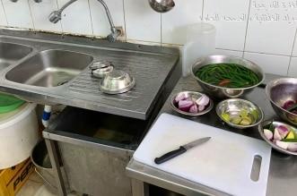 مخالفات بالجملة تُغلق 5 منشآت غذائية في الغزة 3