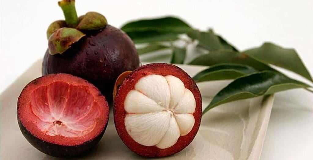 جوز جندم فاكهة تشبه فصوص الثوم تقاوم الأمراض