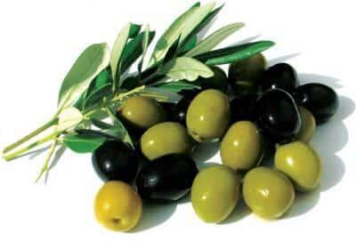 أيهما أفضل الزيتون الأسود أم الأخضر؟